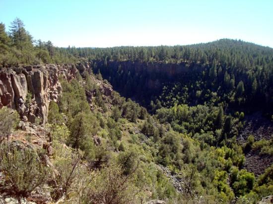 Sycamore Rim Trail