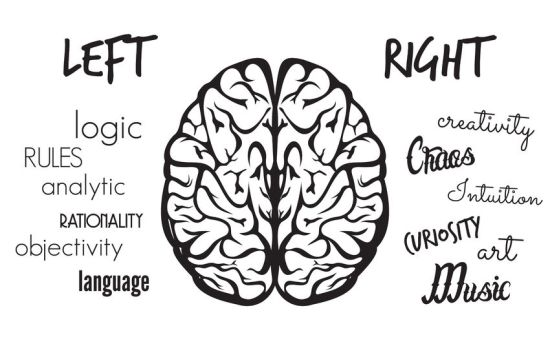 Left or Right Brained